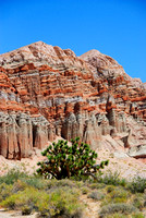 Red Cliffs-3